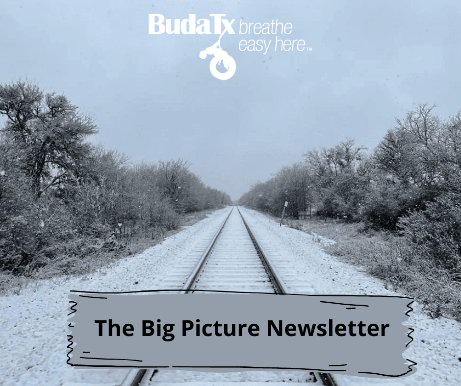 The Big Picture Newsletter (12)