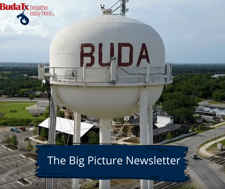 The Big Picture Newsletter (15)