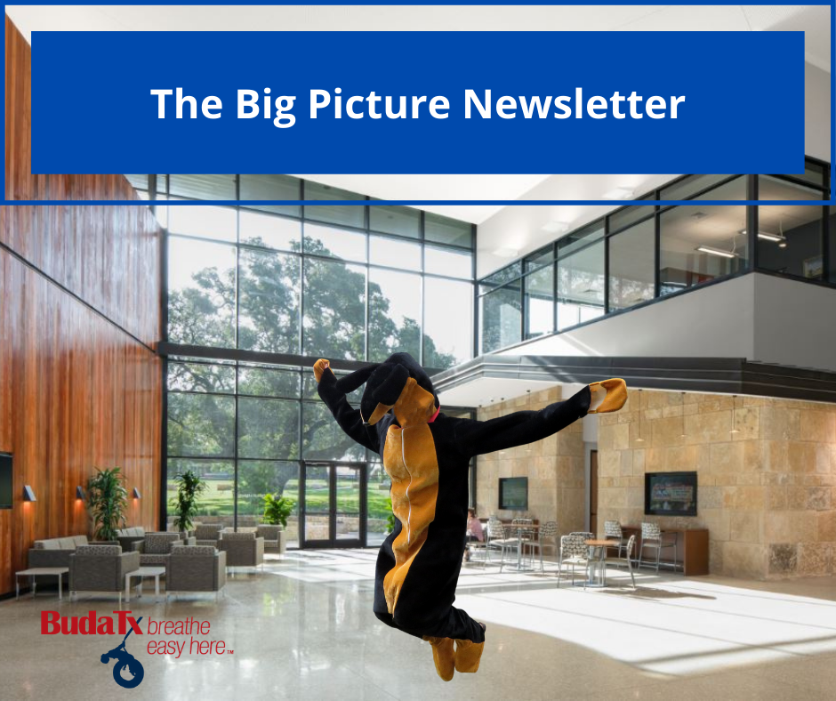 The Big Picture Newsletter (21)